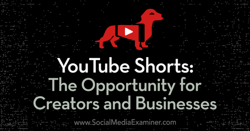 YouTube Shorts: The Opportunity for Creators and Businesses : Social Media Examiner
